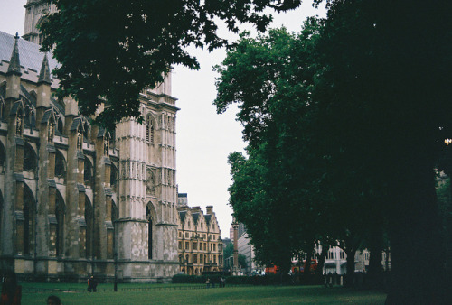travel-abroad:  westminster abbey by shainasavoia on Flickr.