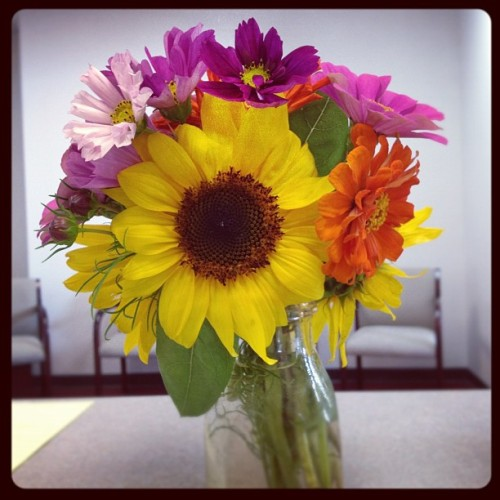 Beautiful, beautiful flowers from The Farm. Instantly brightens my day at work! #flowers #farm #beautiful #auntpatti  (Taken with Instagram)