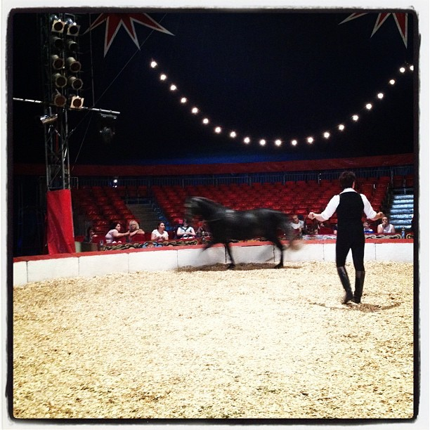 What is the circus without a horse?