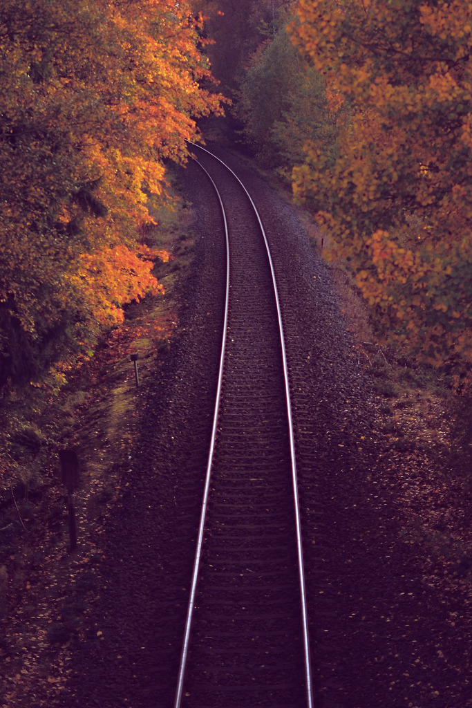 Autumn Railway (via krelle)  (c) 2011 krelle under CC-BY-NC-ND license.