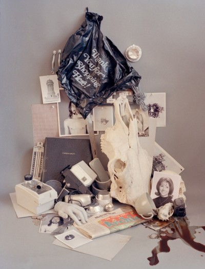 freundevonfreunden:  Accidental Archives by Sara Cwynar The Canadian photographer Sara Cwynar collected coloured objects over years. She then began to put the similiar colours together and thus created beautiful images. It said there is no connection, besides the colour: just by accident. However, one may notice that some things do go hand in hand. The artist herself has quite the impressive resume, among them New York Times Magazine. She is currently working in New York, having had already several exhibitions at galleries all around, such as 107 Shaw Gallery and at the Canadian Butcher Gallery.  (Via Defringe)