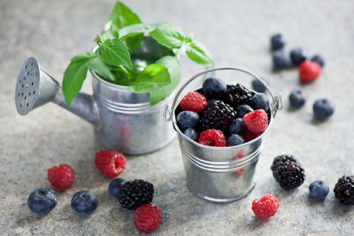 Summer berries (by The Little Squirrel)