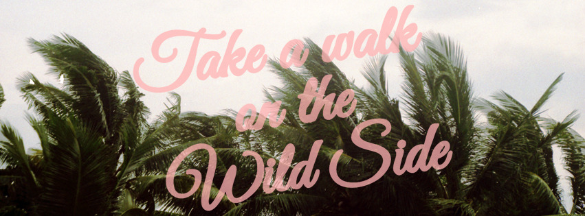 TAKE A WALK ON THE WILD SIDE / 16.08.12