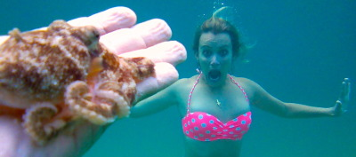 The One in Which My CRPS/RSD Riddled Body Braves the Ocean & an Octopus (eek!) **I have to apologise for my absence lately, but I've been having an incredibly hard time both physically & emotionally with this disease, making it hard for me to write.  I don't want to spoil this post by blubbering, but I do plan to post more soon - including more about what I'm going through.  CRPS/RSD sure is a toughie, and so it means the world to me that you're weathering this storm with me :)