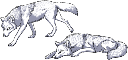 Inhaling coffee and working on a wolf avatar set.