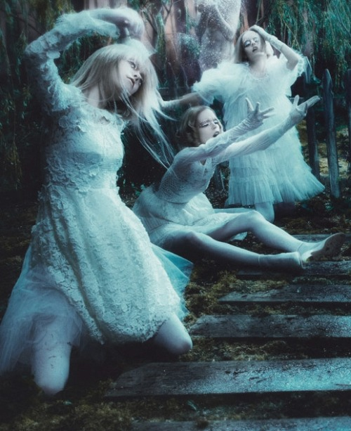 lavandula:  meghan collison, hanne gaby odiele and mae lapres shot by steven meisel for w