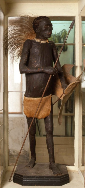 "The ""negro of Banyoles"" is a controversial piece of taxidermy of a bushman which used to be a major attraction in the Darder Museum of Banyoles (Catalonia, Spain) until 1991 »> http://en.wikipedia.org/wiki/Negro_of_Banyoles"