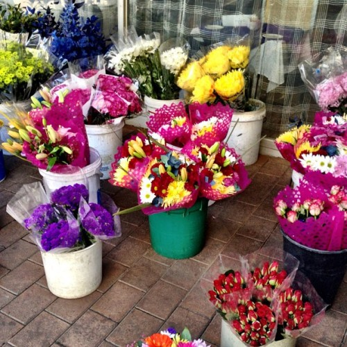 The Florist outside the Devonshire, Braamfontein  (Taken with Instagram at Orion Devonshire Hotel Johannesburg)