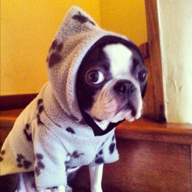 From @nagueva #ig #hoodie #precious  (Taken with Instagram)