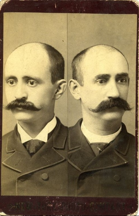ca. 1900, [cabinet card, split portrait of mustachioed Cornelius and Clinton Kenney, brothers, with shaved heads], New York Photo Co. via Harvard University's Schlesinger Library on the History of Women in America, Radcliffe Institute