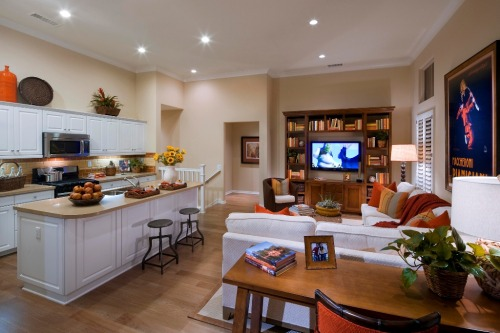 NAHB's Home of the Day is liking the orange accents in this room. But we might pick something other than Shrek to watch this weekend. And hey, it's time to apply for the 2012 BALAs? Learn more here: http://www.nahb.org/award_details.aspx?awardID=1627&utm_source=tumblr&utm_medium=social&utm_content=2BALA&utm_campaign=HOTD