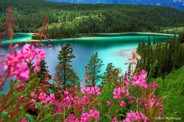 christiannegosling:  Emerald Lake, Yoho National Park, British Columbia, Canada