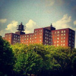 Red Hook, Brooklyn., High Rises & Trees #Clouds #Buildings #Homes #Trees #Brooklyn #RedHook #Summer #TheHood #NewYorkCity #SouthBrooklyn  (Taken with Instagram at B61 Stop- Osego St & Lorraine)