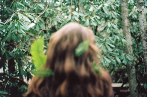 kevinthebird:  fern woman (by ivivalamolly)