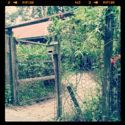 Kampung houses in Ubin. #Singapore  (Taken with Instagram at Ubin Town)