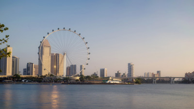 refano citra:  Singapore Flyer. World's Tallest Observation Wheel.taken from bay south garden.