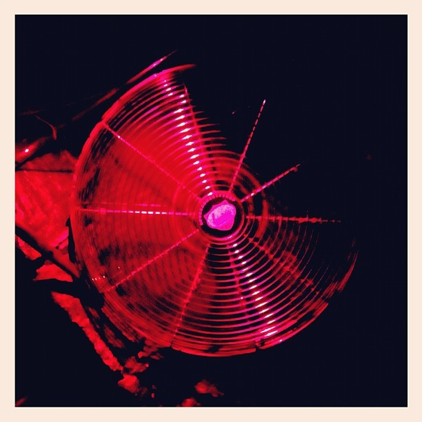 My number one fan. #fan #lit  #nyc #drunk  (Taken with Instagram)