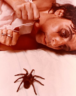 alicecooperfan:  Alice Cooper and a tarantula. (1975)
