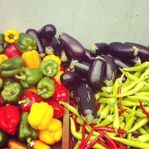 Little India, where even the veggies are technicolor (Taken with Instagram at Buffalo Road)