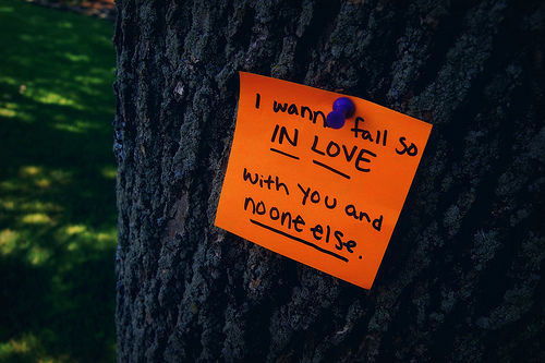 I wanna fall so in love with you and no one else.