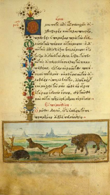 jothelibrarian:  Pretty medieval manuscript of the day is an illustrated edition of Aesop's fables. Dating from around 1480, and illuminated in Italy, it is now in the collection of the New York Public Library. This image shows part of the story of the donkey's petition to Zeus. The donkey is cunningly disguised as a lion… Image source: New York Public Library, Spencer Collection MS 50. Image believed to be in the public domain because its copyright has expired.