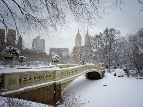 "Bow Bridge in the snow. Central Park winter. New York City.  In the silent stillness of winter the world stops rotating temporarily.  All sound, speech and thought is muffled as the earth slumbers briefly under a blanket of freshly fallen snow.  In each snowflake rest the hopes and dreams of all who have ever felt the warmth of an anticipatory heart-flutter: dream-sputters that wrap the earth in the weight of their desires.  —-  Built between 1859 and 1862, Bow Bridge is one of Central Park's most iconic structures. This image was taken during a snowstorm in Central Park, New York City.  —-   View this photo larger and on black on my Google Plus page  —-  Buy ""Dream Sputters - Bow Bridge Central Park Winter"" Prints here, email me, or ask for help."