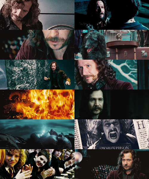 "fangirl challenge ;; 10 Male Characters + Sirius Black: ""Sirius was a brave, clever, and energetic man, and such men are not usually content to sit at home in hiding while they believe others to be in danger."""