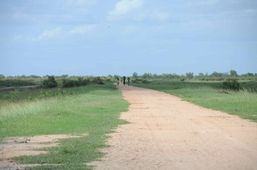 Landscapes of Africa (Quelimane, Mozambique) #1