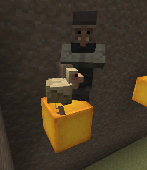 a brave testificate has joined the server's brave lonely chicken on the glowstone block. I SHIP IT OTP TESTIFICATE x CHICKEN