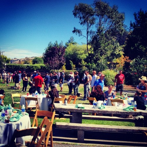 Zach's company picnic (Taken with Instagram)