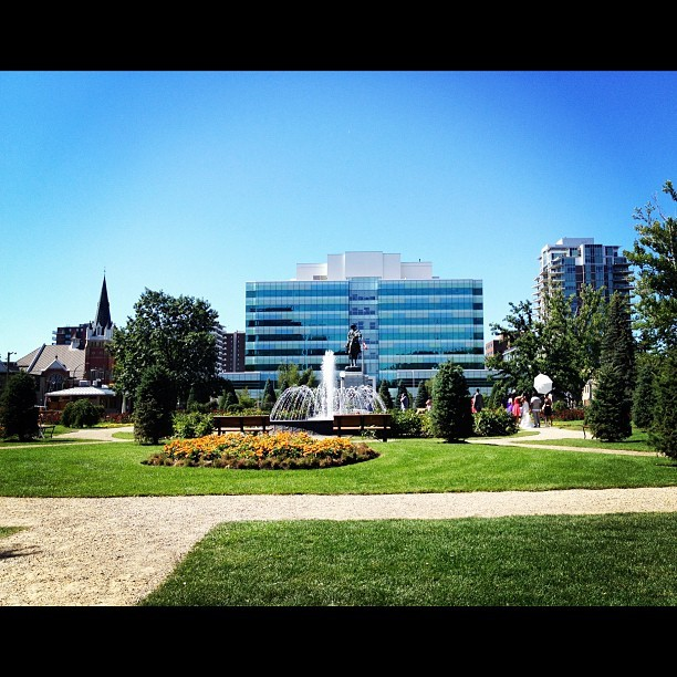 My favourite park in the city! #central #memorial #park #calgary #yyc #memorialpark #iphoneonly  (Taken with Instagram)
