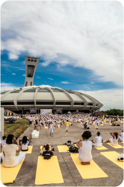 "White Yoga Session in Montreal. 2000 ""white"" yogis."