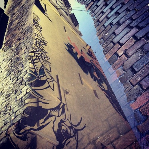 Alley Art #tesone #palehorse  #vitalebrothers  (Taken with Instagram)
