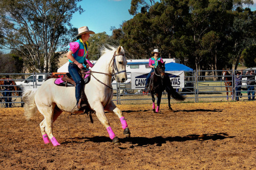Team Penning at Canowindra (NSW) on the June long weekend 2012 … I am in awe of the teamwork required and exhibited, not only by horse and rider, but also between the three riders involved. Taken during my recent two month ramble around our beautiful countryside.