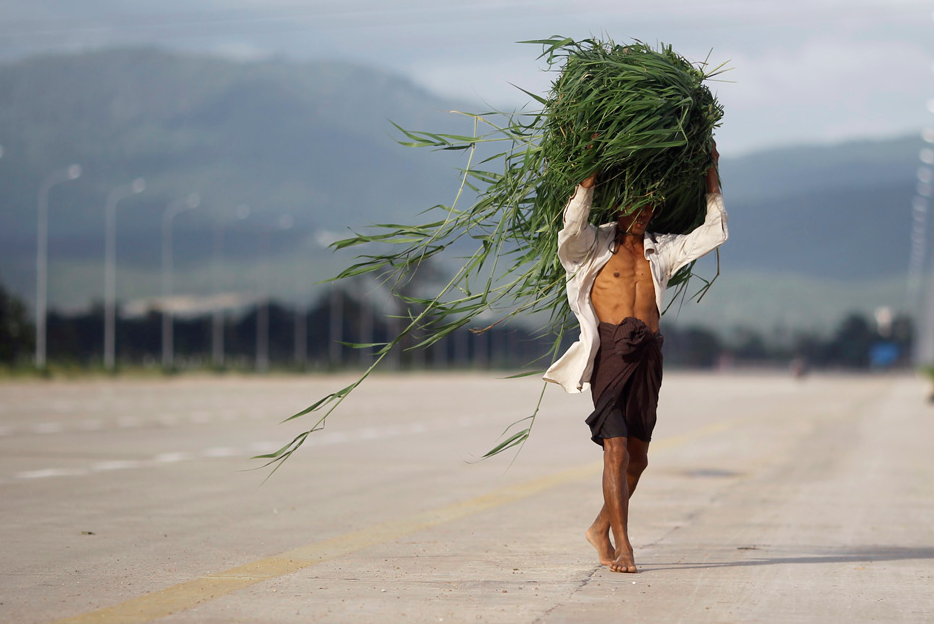 A man walks down a nearly empty road as he carries grass to feed his oxen at Myanmar's new capital Naypyita August 5, 2012. REUTERS/Soe Zeya Tun