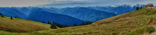 Hurricane Ridge pano.