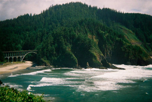gentlewolves:  devils elbow Oregon (by wayne denman)