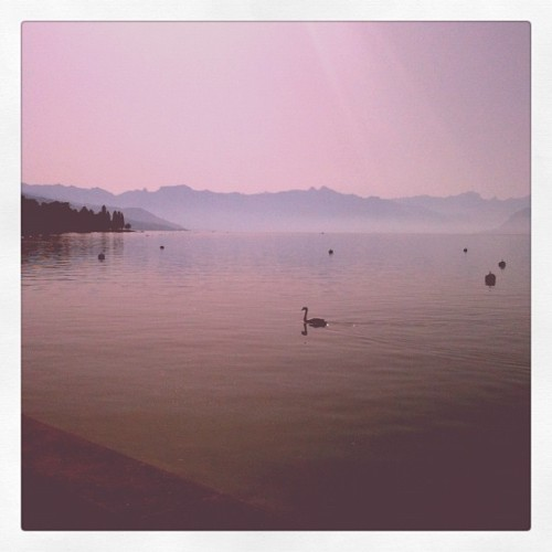 Gonna be a hot one today #switzerland  (Taken with Instagram)