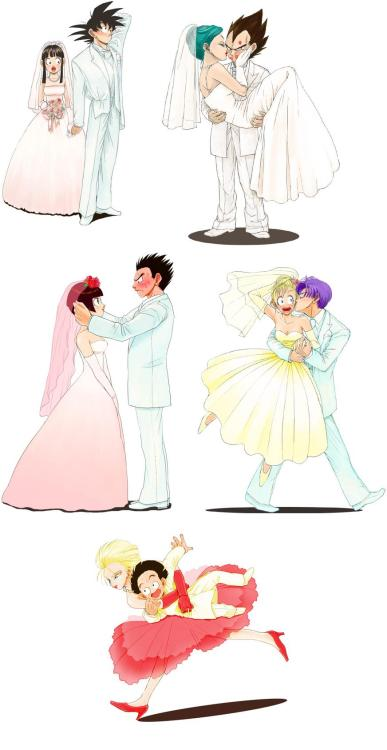 miaumiau74:  i love all the couples of dragon ball z(but i like little more vegeta and bulma)