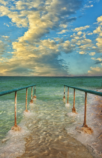 The Dead Sea by Amir Peeri