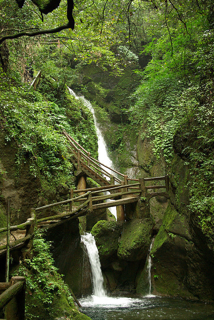 visitheworld:  The path to taoist temples of QingCheng Mountain, Sichuan, China (by sylvain.lamour).