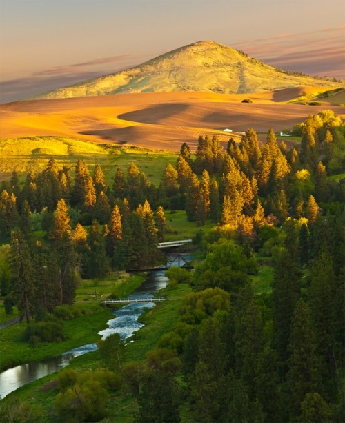 Golden Sunrise: Palouse River / Steptoe Butte - Washington, USA