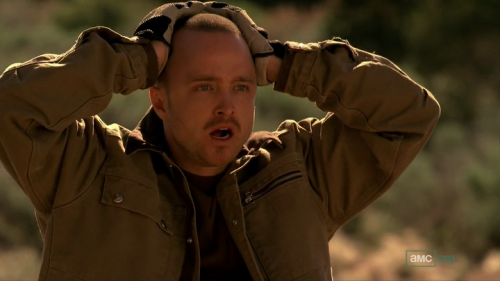 synecdoche:  Guys, I am so scared to watch Breaking Bad tonight.