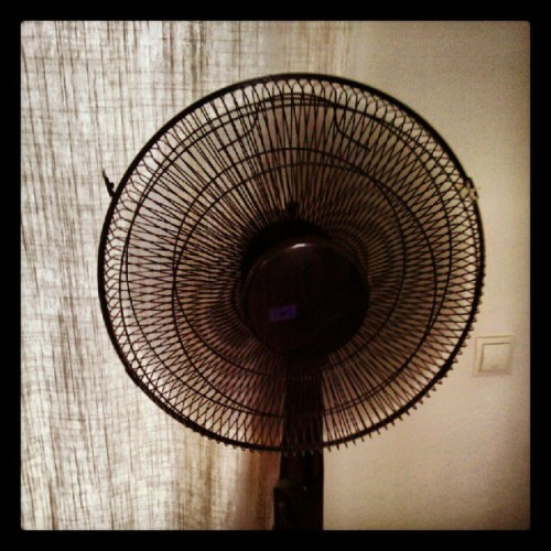 My best friend these days #fan (Taken with Instagram)