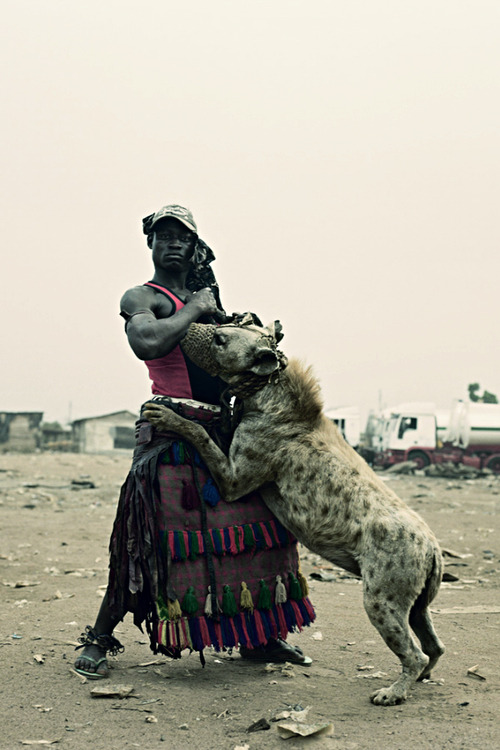 ohyouthirsty:  what the hell? that's a hyena gahdamn. niggas in africa don't play.
