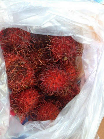 bag full of goodies love me some rambutan