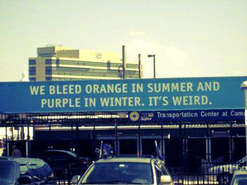 """We bleed orange in the summer and purple in the winter."""