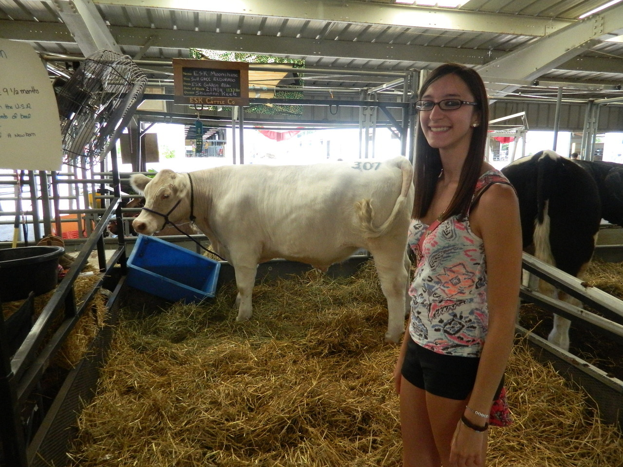 i was in cow heaven at the fair c: