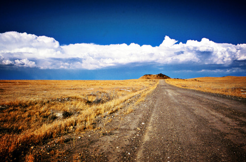Dirt Road ~ Idaho Desert