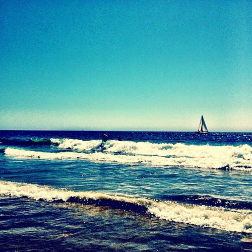 Surf or Sail. (Taken with Instagram at Manhattan Beach (on The Sand))